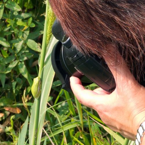 P1150024-rw2-ver2_aperture