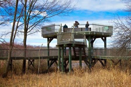 The observation tower located along the boardwalk at Huntley Meadows Park, Fairfax County, Virginia USA.