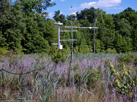 The automated weather station located in the central wetland area at Huntley Meadows Park, Fairfax County, Virginia USA.