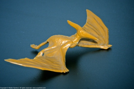 A toy pterodactyl. EXIF: ISO 800; 360mm (540mm, 35mm equivalent); 0 ev; f/16; 1/180s.