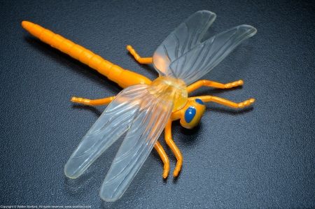 A toy dragonfly. EXIF: ISO 800; 53mm (79mm, 35mm equivalent); 0.67 ev; f/16; 1/250s.