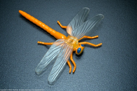 A toy dragonfly. EXIF: ISO 800; 55mm (83mm, 35mm equivalent); 0.67 ev; f/16; 1/250s.