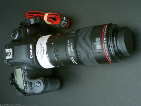 Canon EOS 5D Mark II macro photography kit.